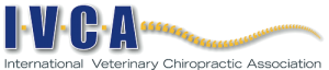 IVCA_Logo-300x64